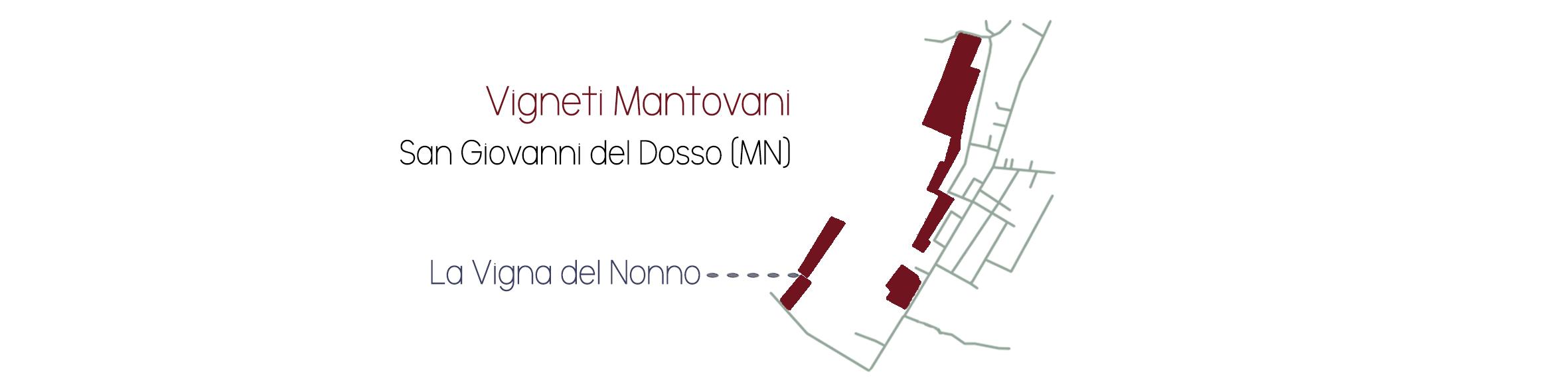 Vigneti Mantovanijpg