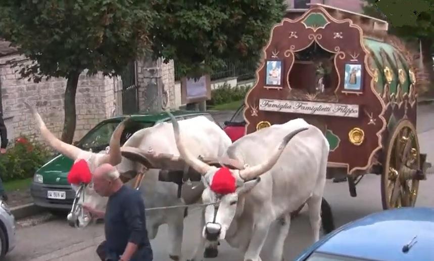 processione_carri_1jpg