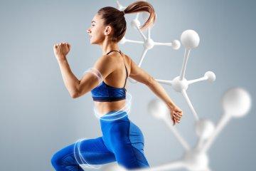 metabolismo velocejpeg