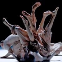 ballet-puntejpg