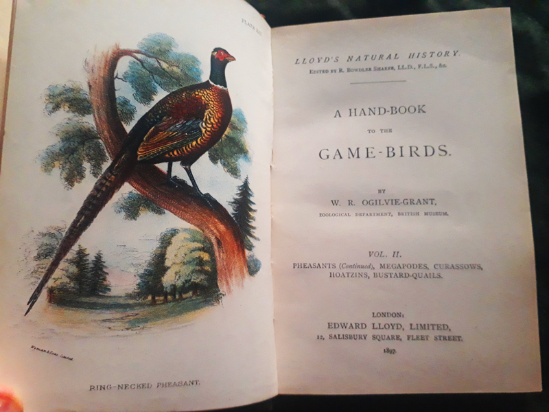 Game - Birds vol. II - 1897 - 24 Chromolito originali