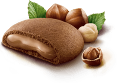 "Grisbì Hazelnut Cream filled Cookies by Vicenzi - 150gr (5.29 oz.) ""Imported from Italy"""