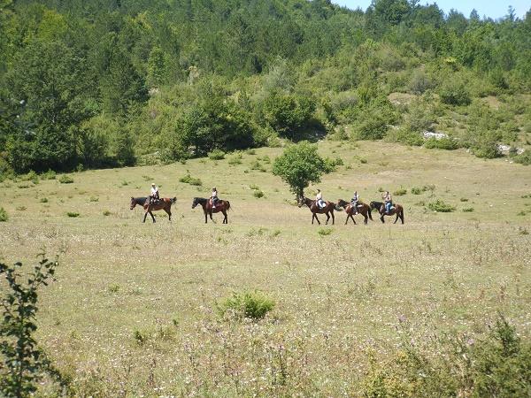 escursione a cavalloJPG