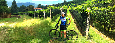 Lake Como Hiking Cycling Vineyards Swiss Merlot Canton Ticino