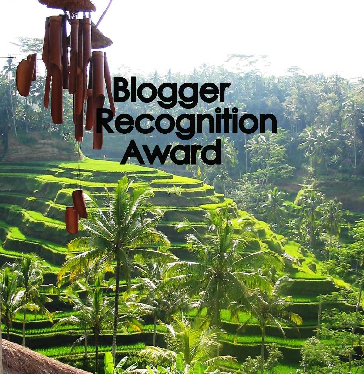 nomina Blogger Recognition Award 2017