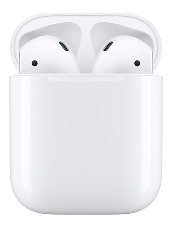 APPLE AURICOLARI AIRPODS 2 + CUSTODIA DI RICARICA