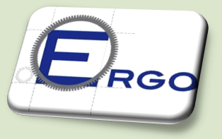 Partnership: ERGO S.R.L.
