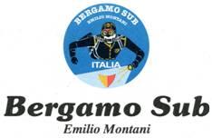 Logo Bergamosubjpg