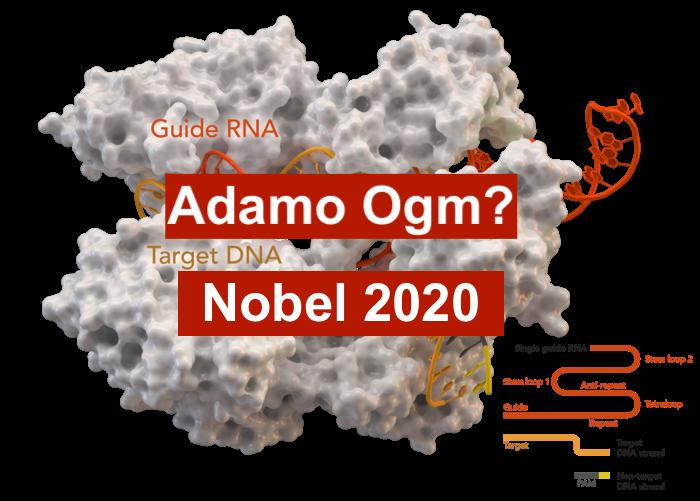 Il Nuovo Adamo Premio Nobel 2020 Speranze e Grandi rischi