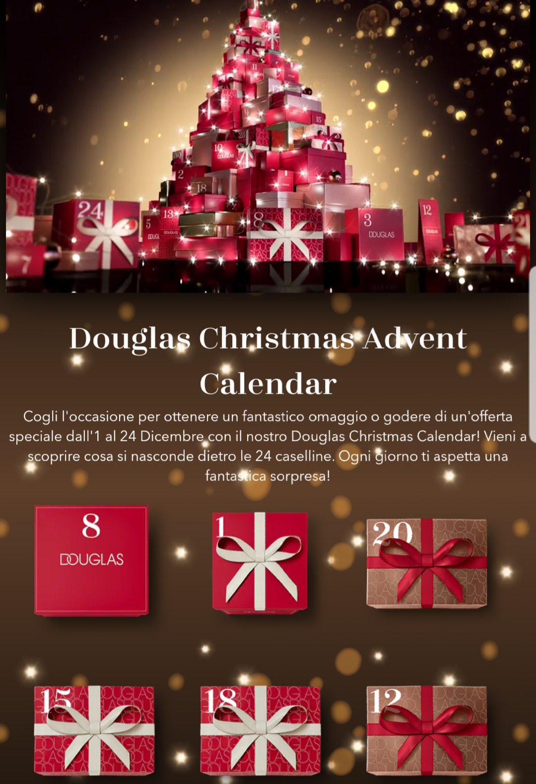 Douglas - Calendario dell'Avvento