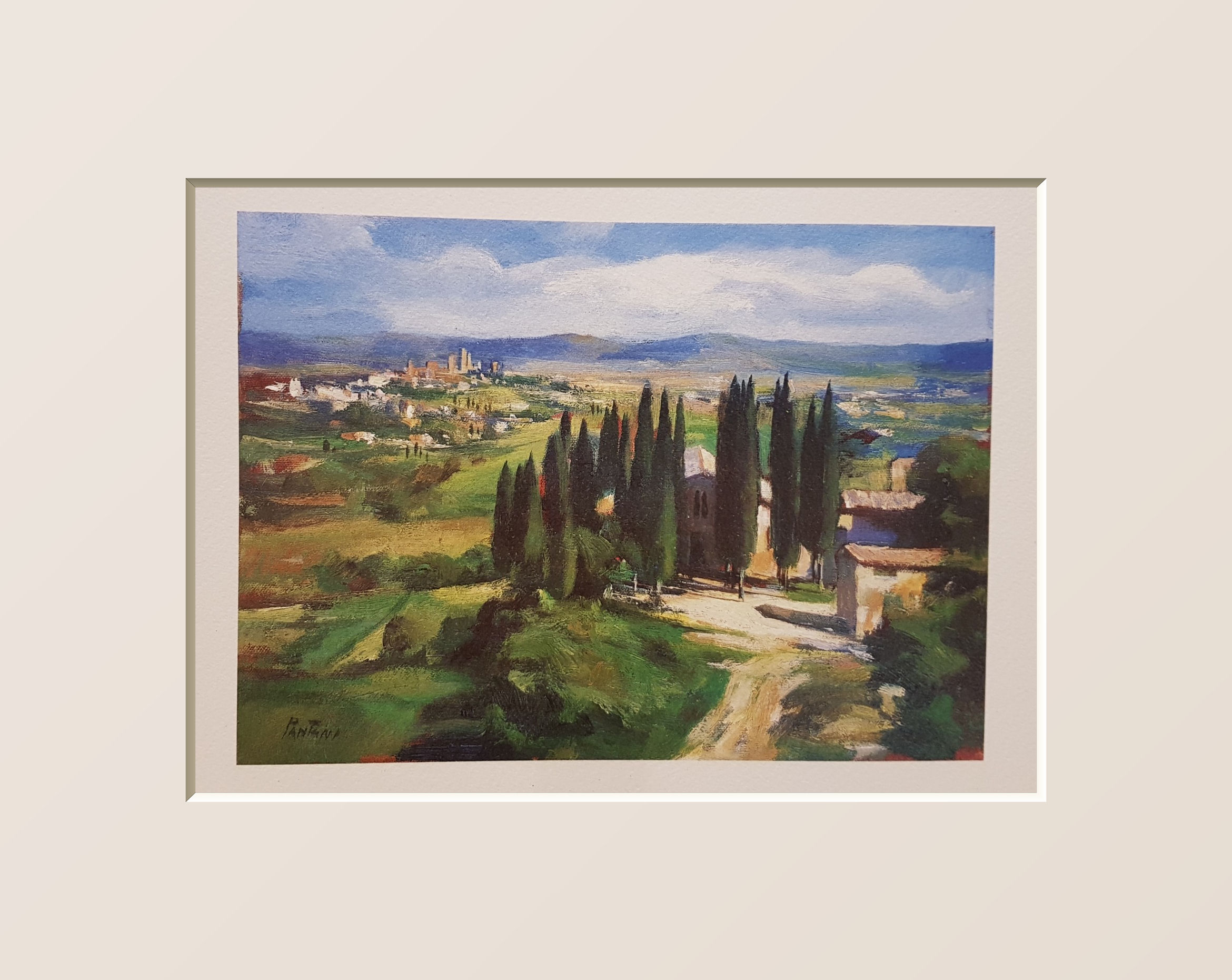 Cipressi in toscana, Cypresses in tuscany