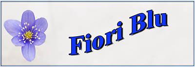 fiori-blujpg