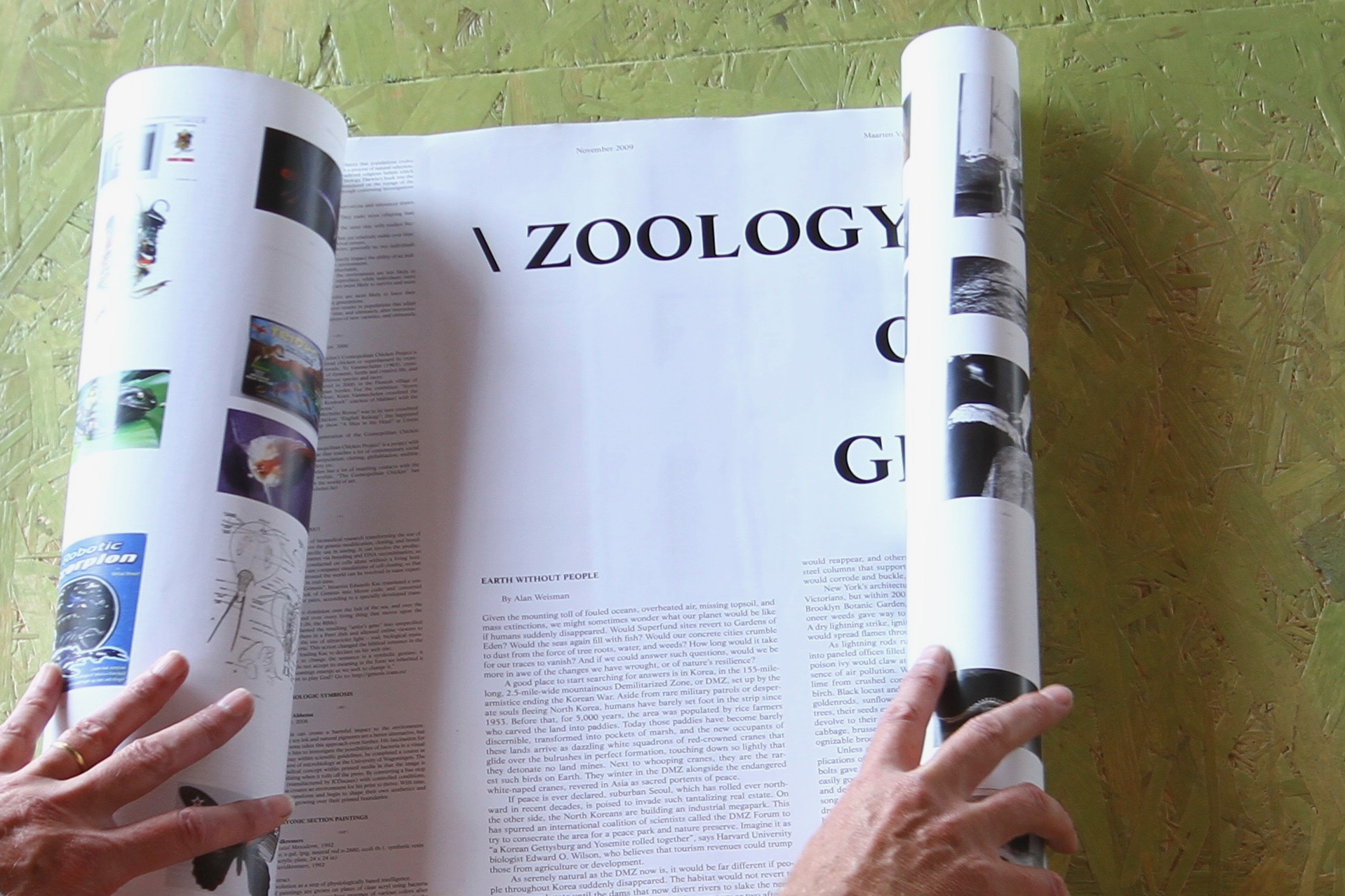 Nr. 64 - \ ZOOLOGY OF COSMLOGY \ ZG \ 1