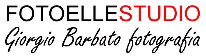Logo fotoellecom trasparentepng