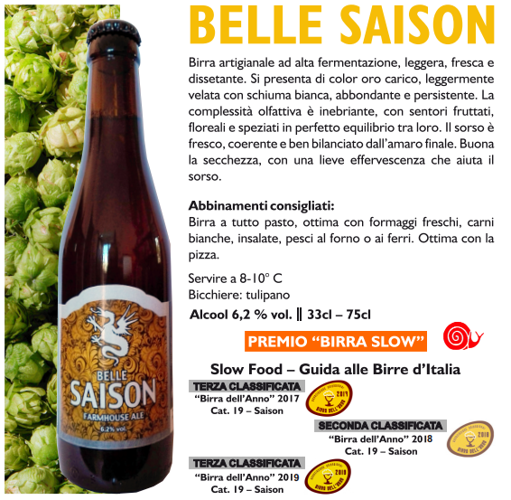 BELLE SAISON - Farmhouse ale 75 cl