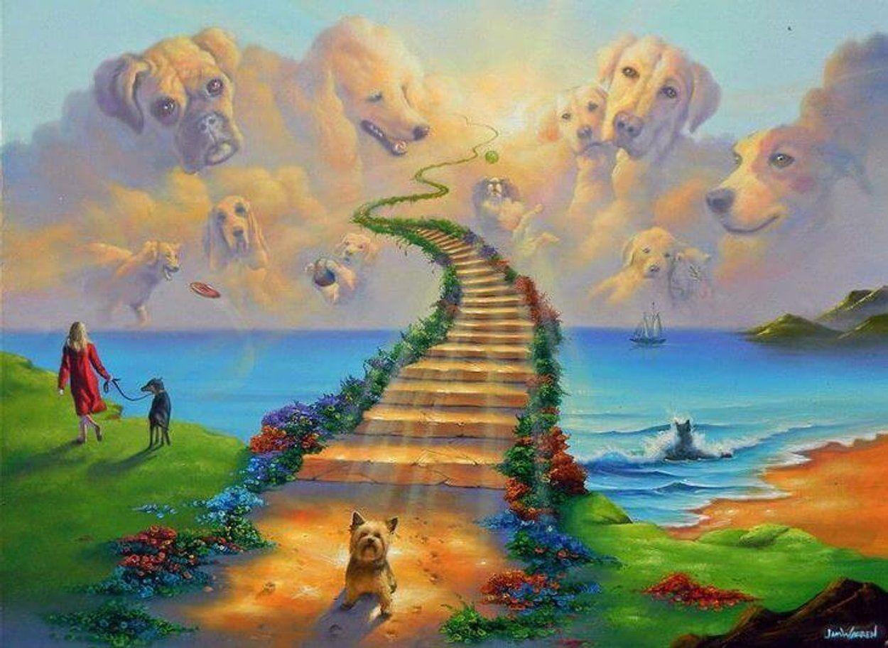 cani-paradiso - ponte dellarcobaleno - arca servicejpg