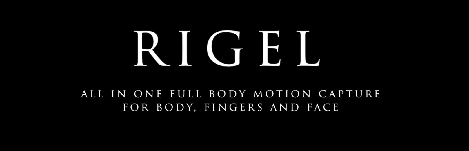 Rigel - All in One Full Body Motion Capture for Body, Fingers and Face - Demo Available