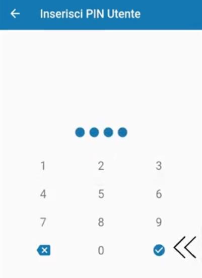 Abilitare accesso da remoto installatore app Bentel Security Absolutapng