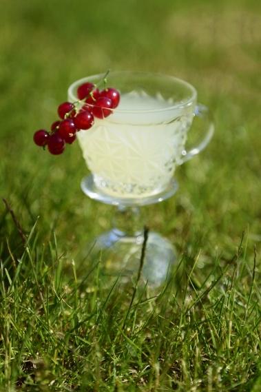 Cocktail05 White Velvet pag 203533x800 379x569jpg