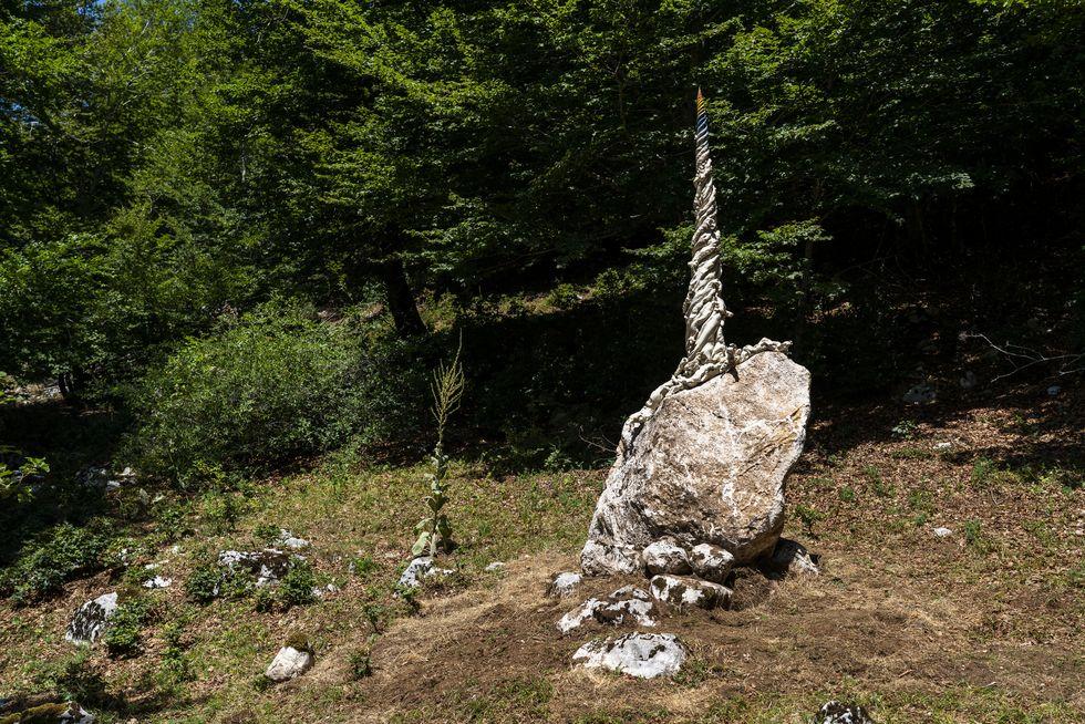 IL Radicorno arteparco-2021-sissi-radicorno-ph-valentino-mastrella-09-1628066539 web jpg