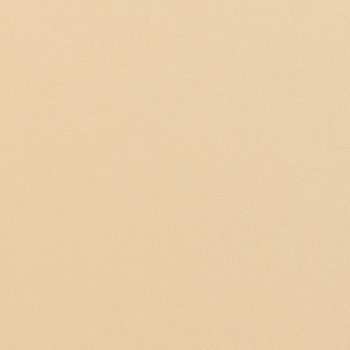 Tonic Studios • Pearlescent card A4 5pcs Ivory sheen