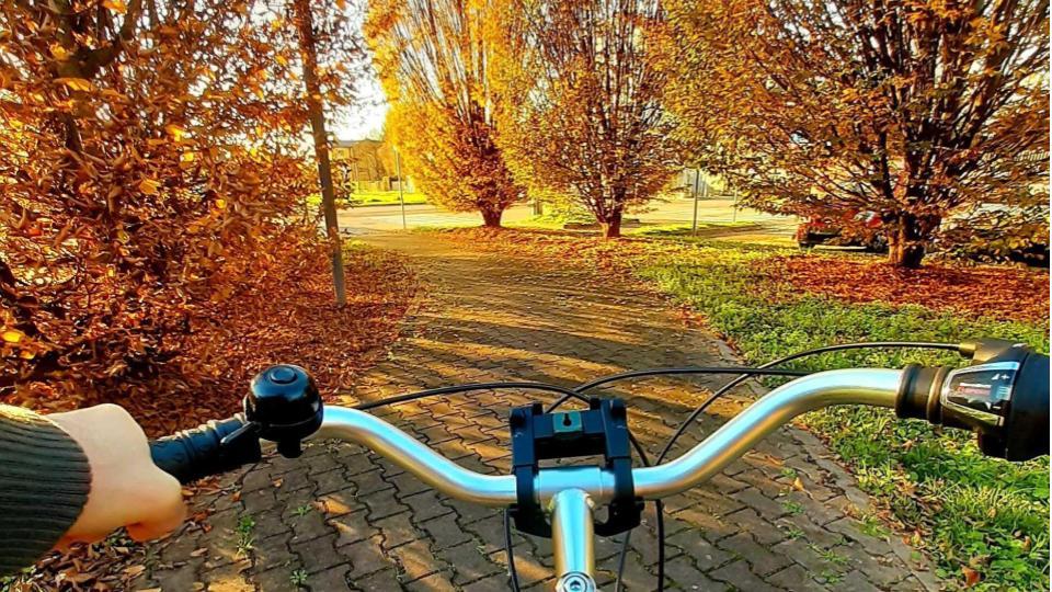 bici-in-autunno-foliagejpg